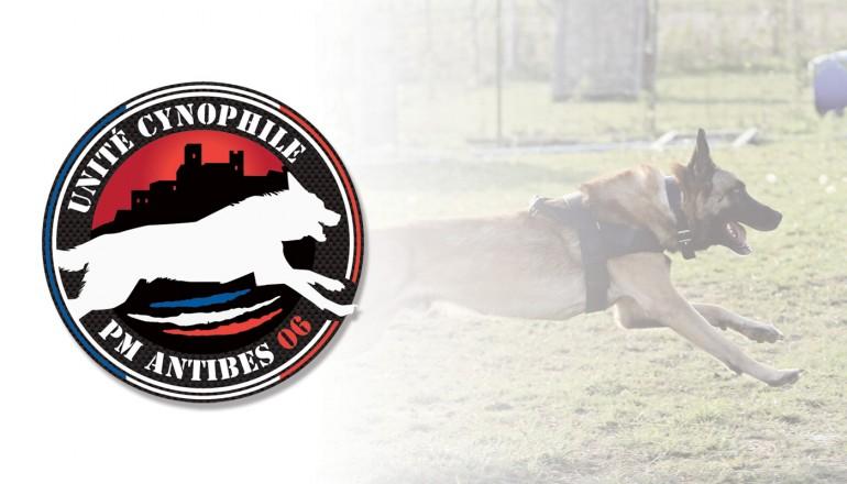 Logo Brigade Cynophile