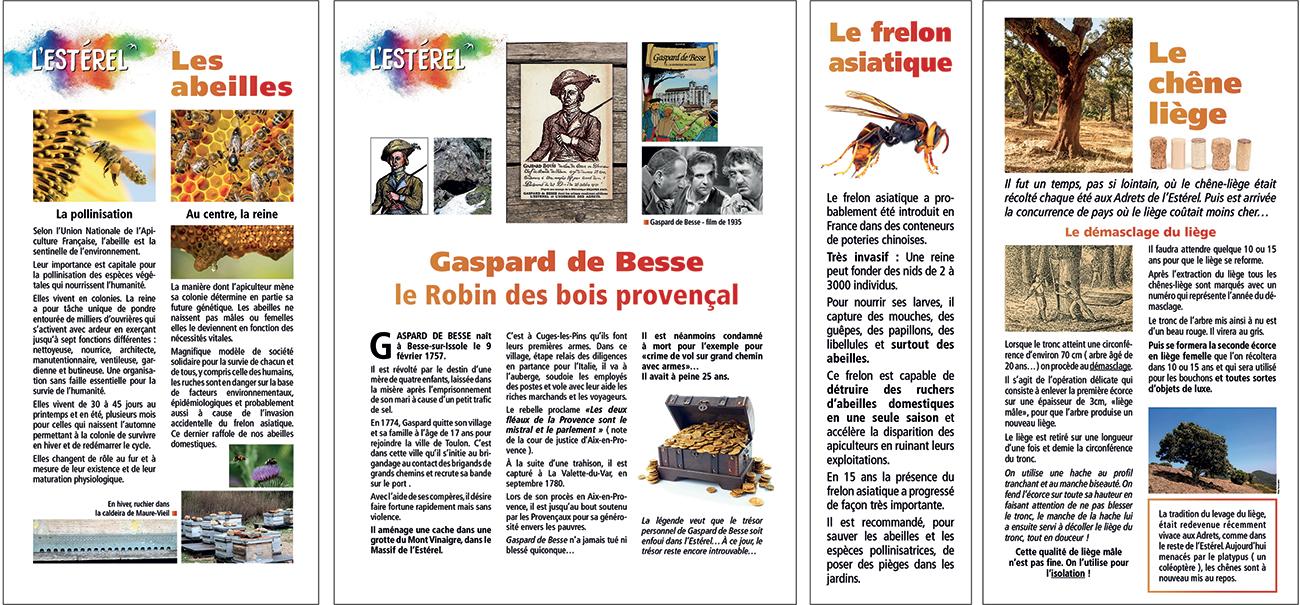 Exposition Théoule Estérel-4