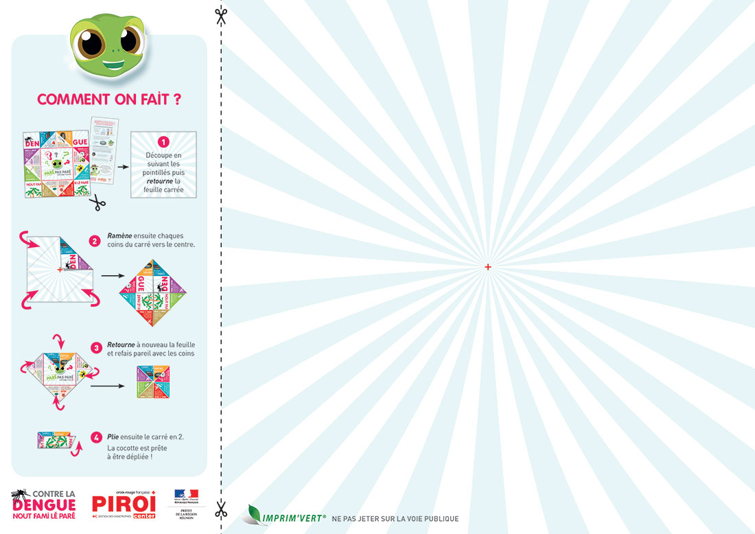 Infographie prévention dengue-1